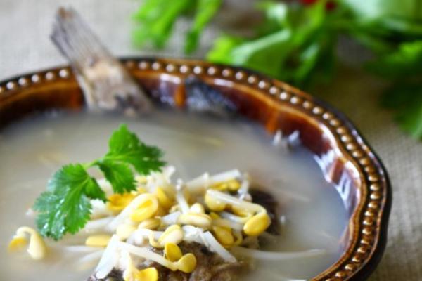 黄豆芽鲶鱼汤