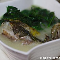 昂子鱼菊花叶汤的做法[图]