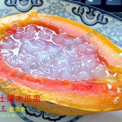 雪蛤炖木瓜的做法[图]
