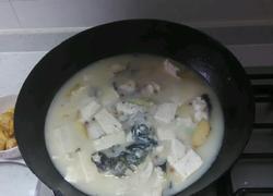 草鱼炖豆腐