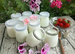 自制酸奶(烤箱版)