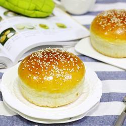汉堡胚(中种法)