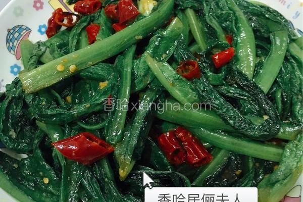 蒜泥油麦菜