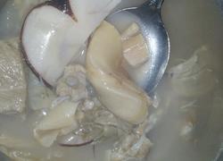 花胶瑶柱海底椰排骨汤