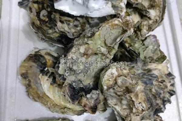 清蒸海蛎子