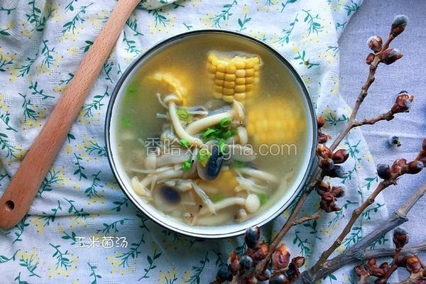 玉米鲜菌汤