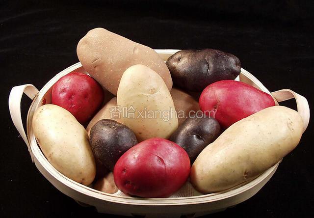 大通马铃薯