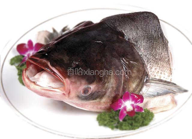 沙湖大鱼头
